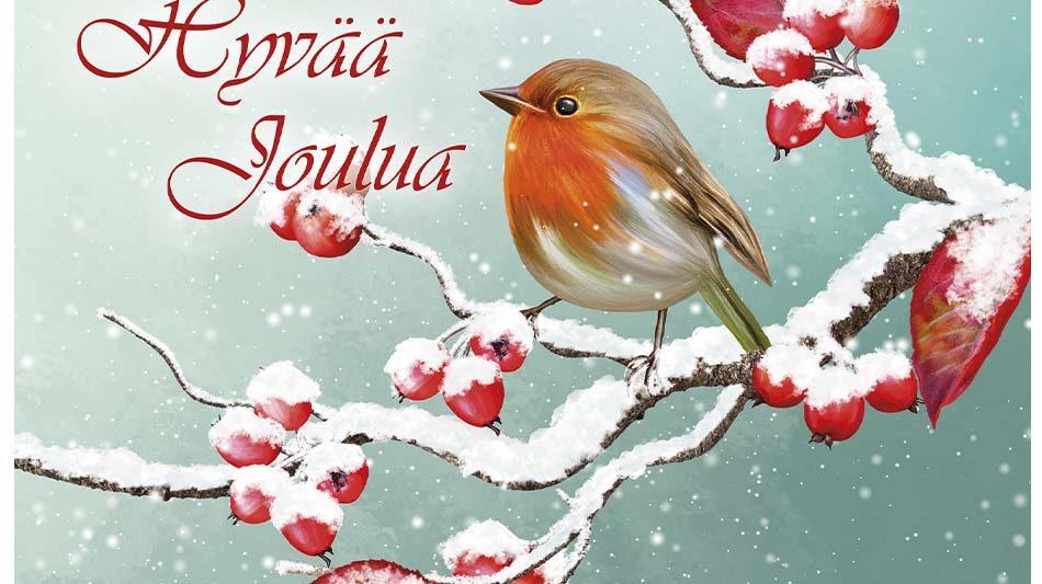 joulukortti-punarinta