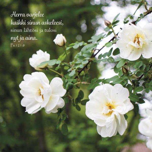 Hengellinen kortti Herra varjelee sinua