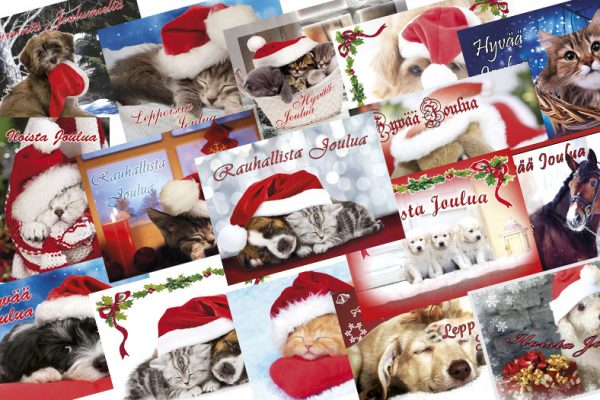 4-joulukortti-lemmikit