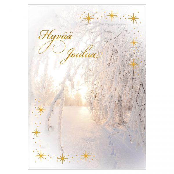 joulukortti-talven-valo-jukka-risikko