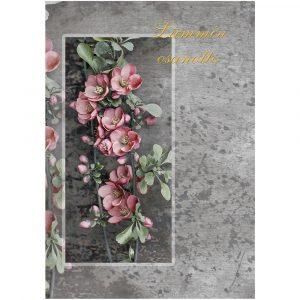 suruadressi-pinkit-orkideat