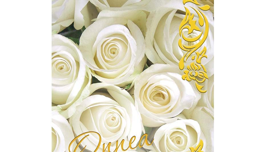 onnittelukortti-valkoiset-ruusut
