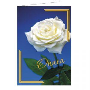 onnittelukortti-valkoinen-ruusu-kirjekuorella