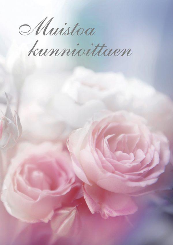 suruadressi-herkkä-ruusu