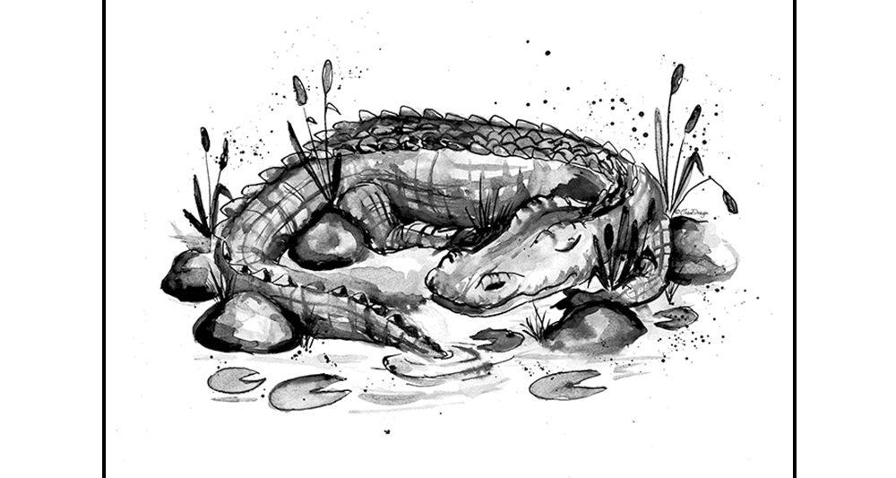 nukkuva-krokotiili-juliste-lasten-huoneeseen