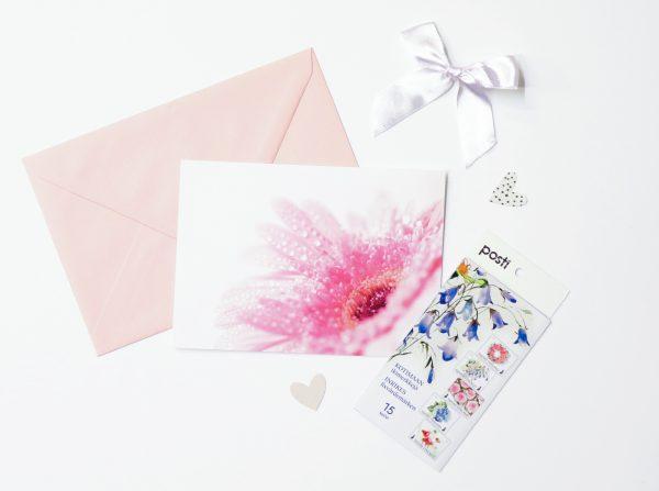 kukka-postikortti-gerbera