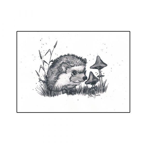 juliste-siili ja sienet